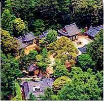 伝灯寺の写真